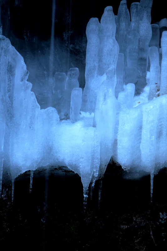 _MG_9911氷が溶け始めて.JPG